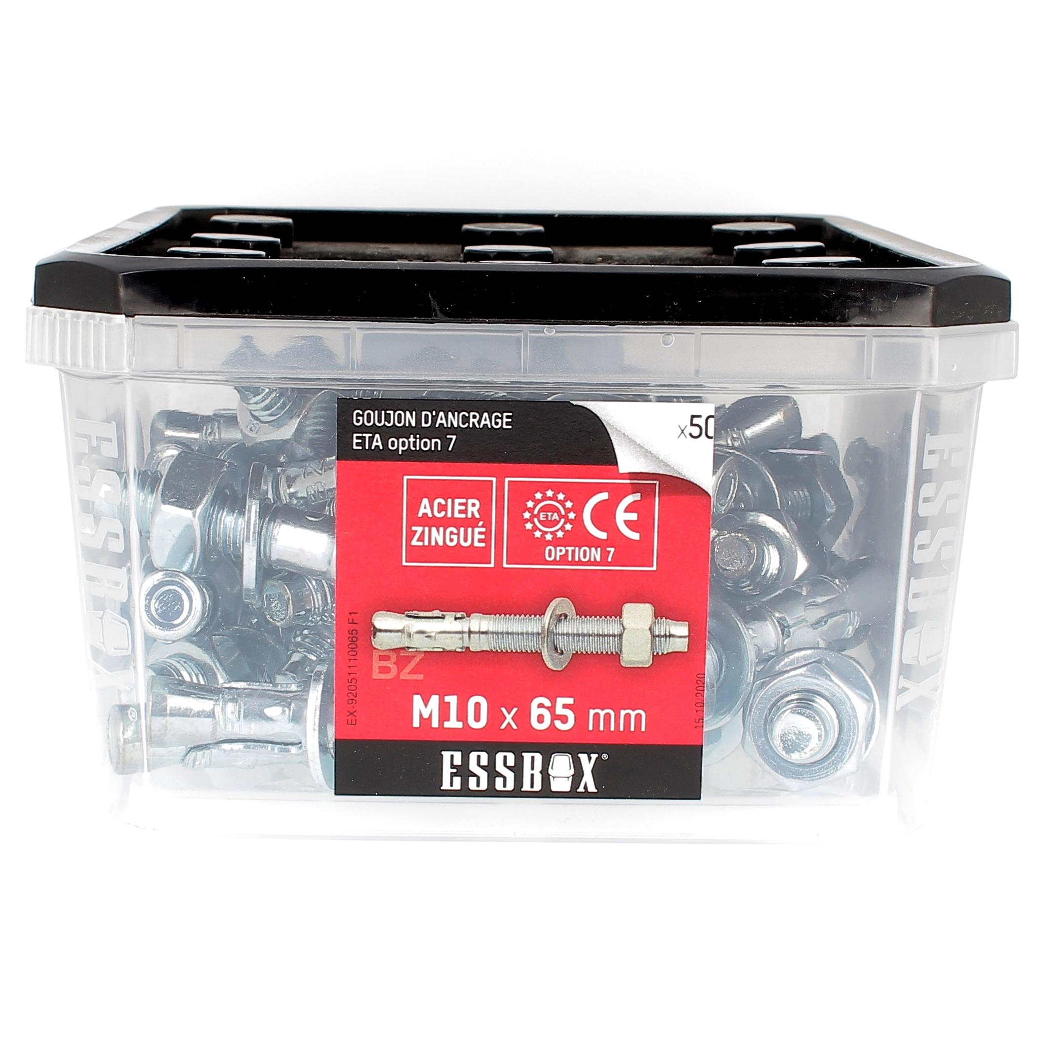 ESSBOX de 50 Goujons D'Ancrage 10X65 Acier